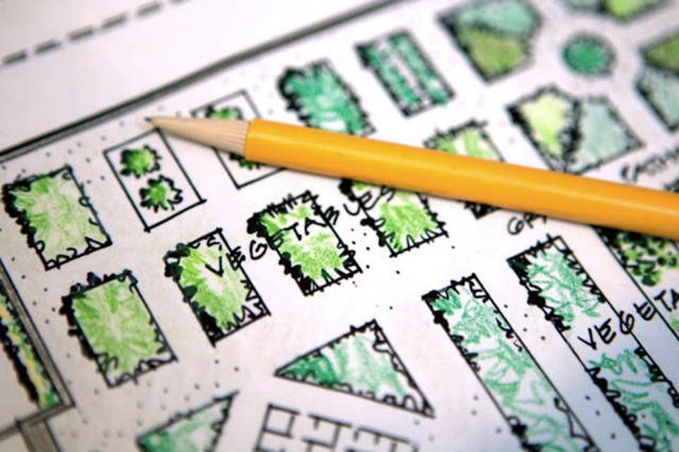 Garden planning: When to start your garden